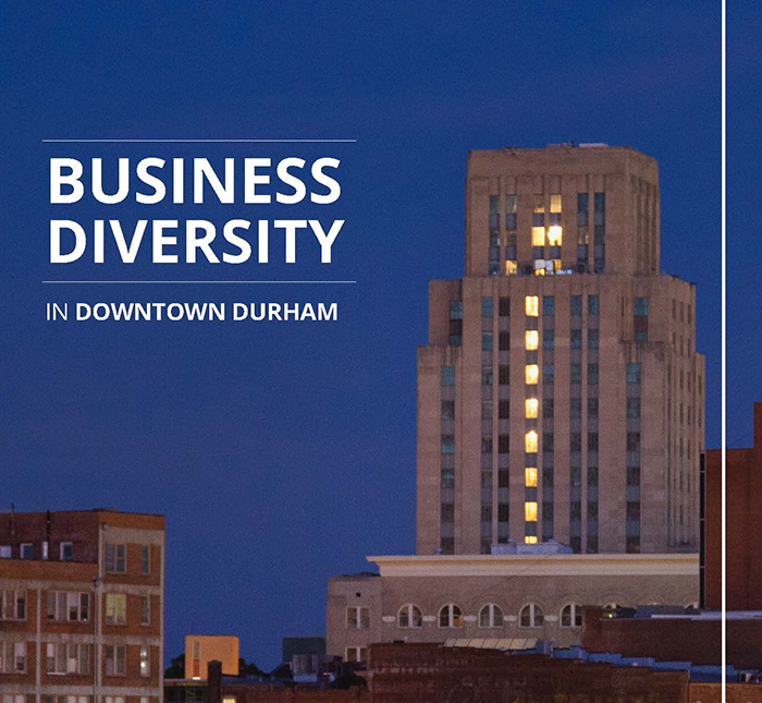 Business Diversity Icon