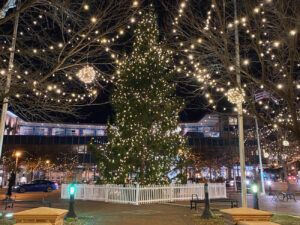 Photograph of Downtown Durham Points of Light