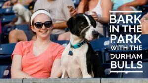 Bark in the Park banner image